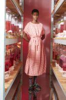PIPETTE DRESS – BERRY CHECKS
